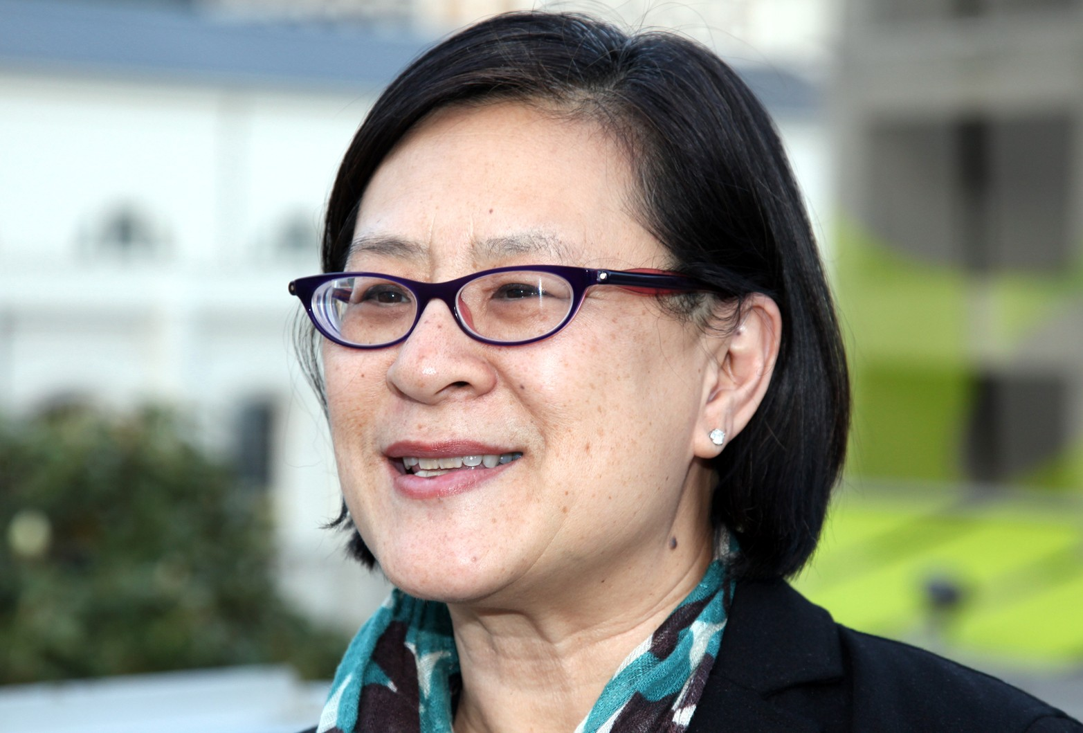 Mae Ngai, Lung Family Professor of Asian American Studies and Professor of History, Faculty of Arts & Sciences